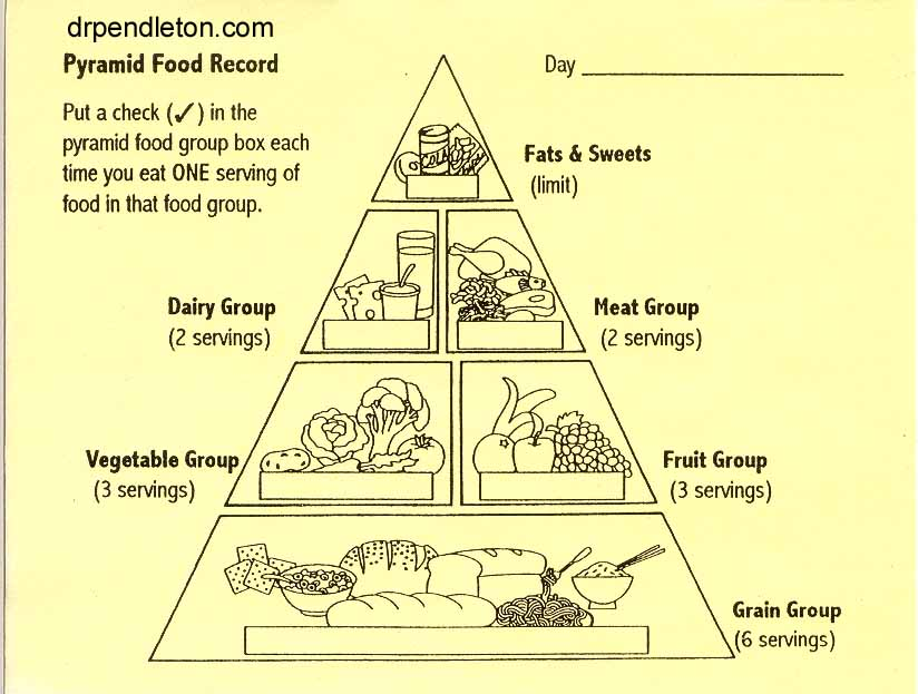Energy+Pyramid+Activity Food Chain Pyramid Worksheets